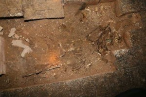 Secret Basement Found in England (13 photos) 13