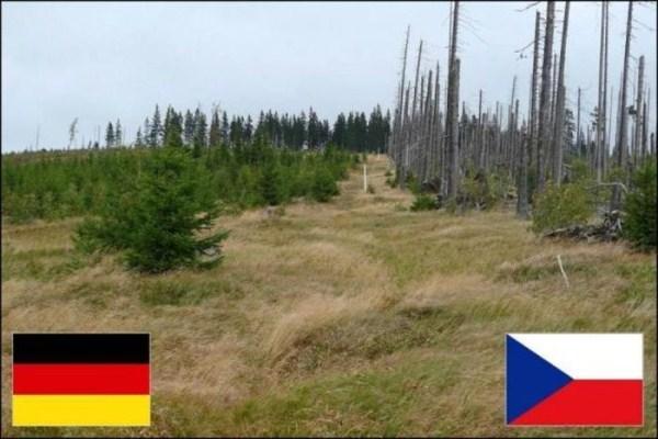 borders (9)