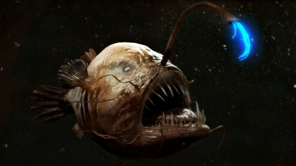 Creepy Deep Sea Creatures (48 photos) 37