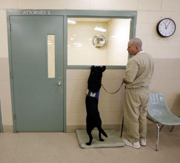prison-life (13)