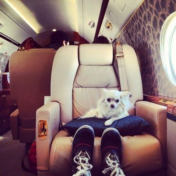 rich kids instagram 39 Spoiled Rich Kids of Instagram (31 photos)