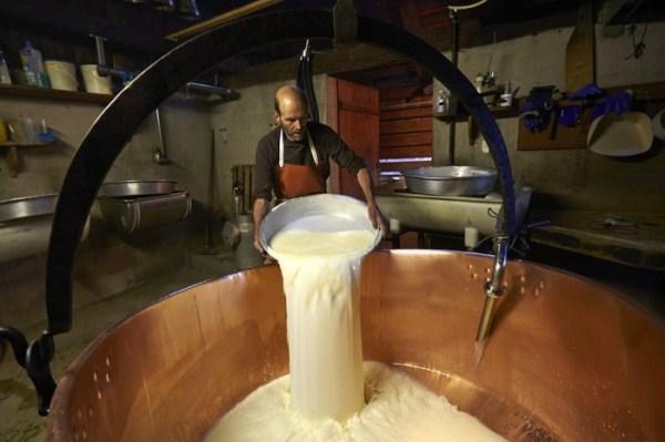 swiss-cheese (11)