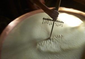 Swiss Cheese Making (22 photos) 12