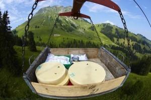 Swiss Cheese Making (22 photos) 19