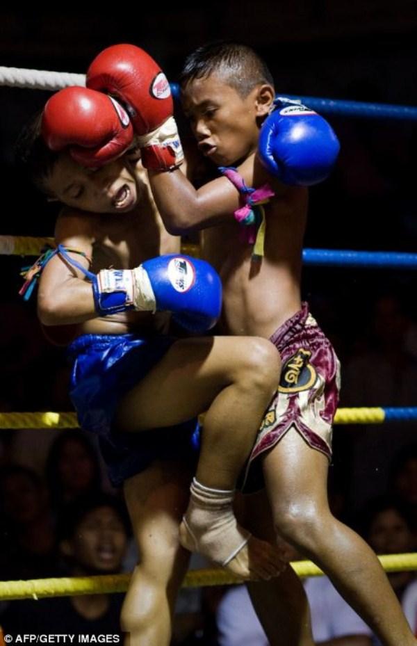 thailand-child-gladiators (2)