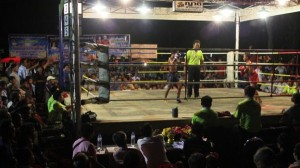 Thailand's Child Fighters (28 photos) 9