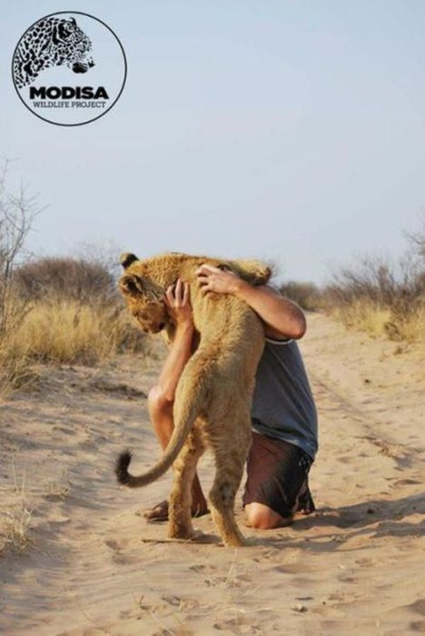 the_man_who_lived_with_lions_in_africa_02_1