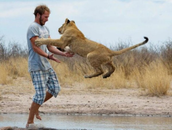 the_man_who_lived_with_lions_in_africa_37_1