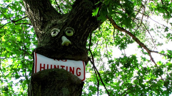 things eaten by trees (5)