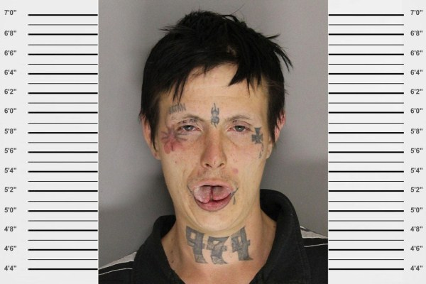 Unusual Mugshots (17)