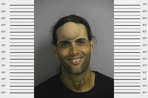 Unusual Mugshots (25)