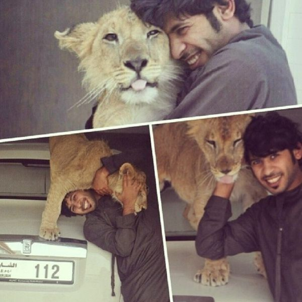 rich_guy_with_lions_instagram_01_1 (3)