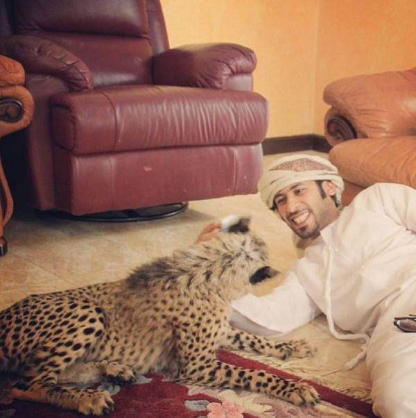 rich_guy_with_lions_instagram_01_1 (33)