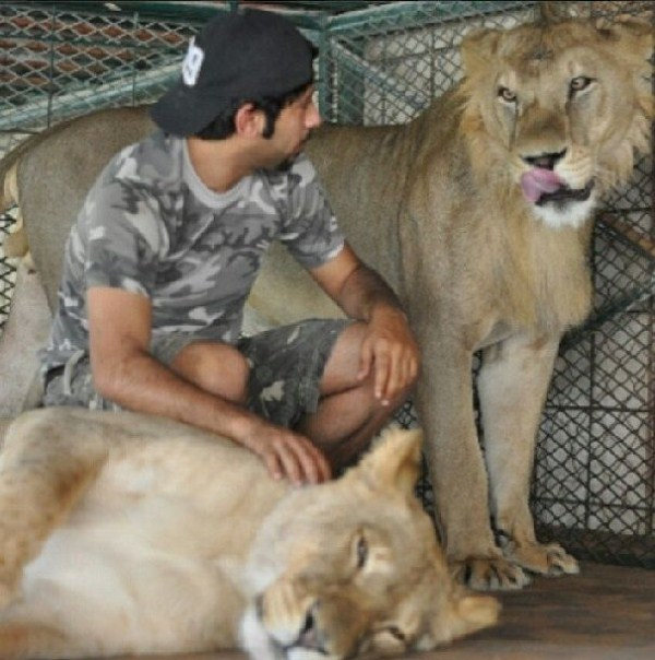 rich_guy_with_lions_instagram_01_1 (34)
