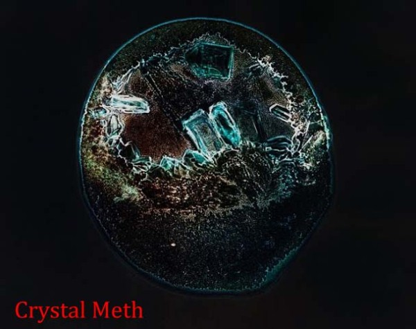 33 Drugs Under the Microscope (14 photos)