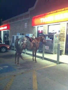 Things are Done a Little Different in Texas (24 photos) 21