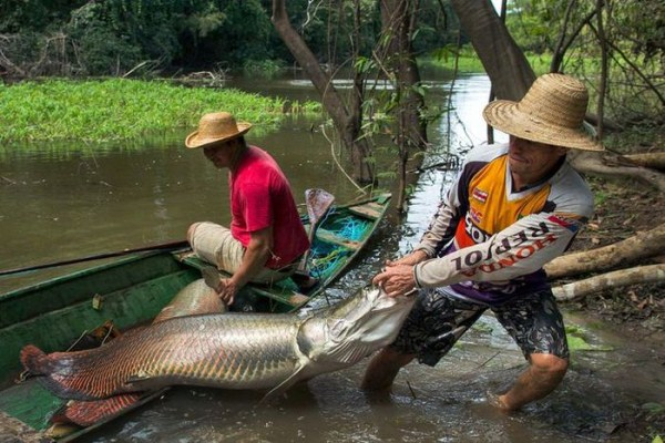 brazil_fishing_02_1