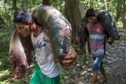 brazil_fishing_12_1
