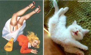 Cats Posing Like Pin Up Girls (24 photos) 11