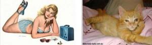 Cats Posing Like Pin Up Girls (24 photos) 12