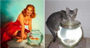 Cats Posing Like Pin Up Girls (24 photos) 14