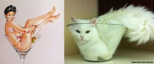 Cats Posing Like Pin Up Girls (24 photos) 2