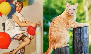 Cats Posing Like Pin Up Girls (24 photos) 23