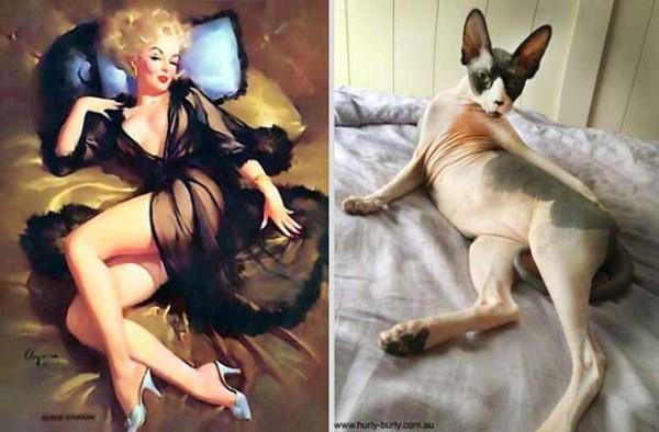 cats-posing (3)