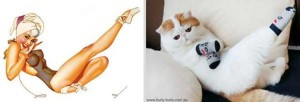 Cats Posing Like Pin Up Girls (24 photos) 9