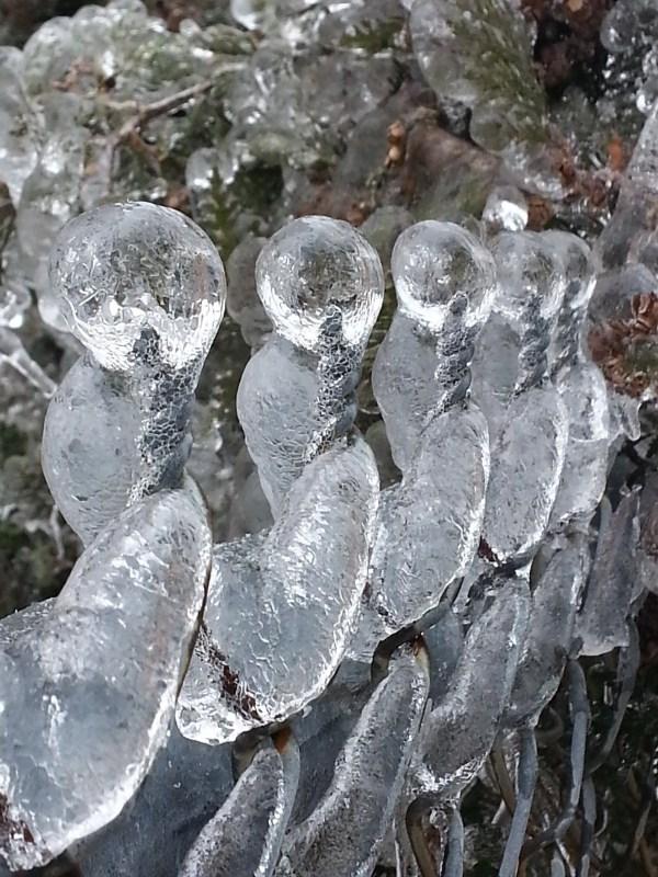ice-storm (12)