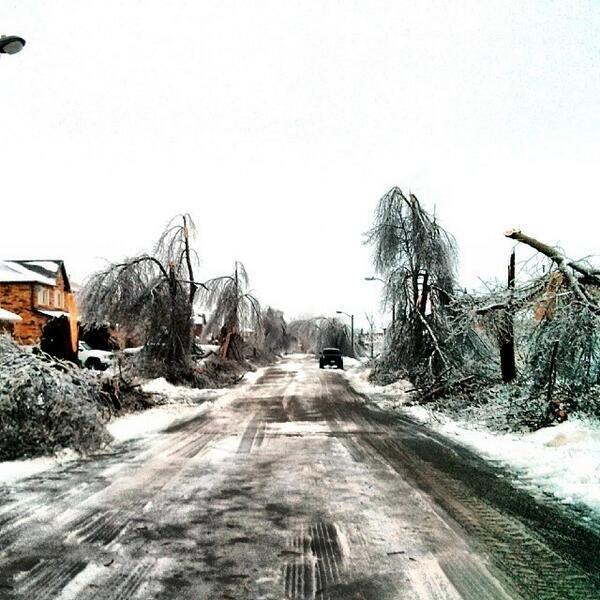 ice-storm (13)