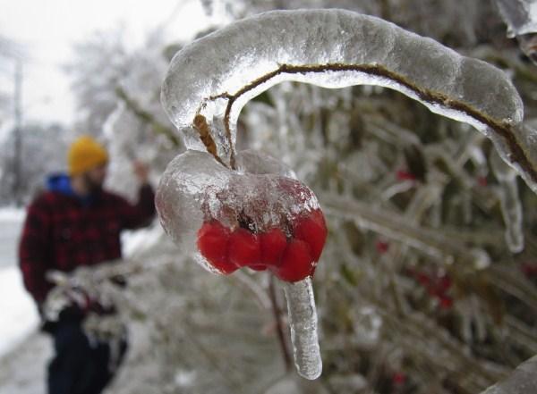 ice-storm (21)
