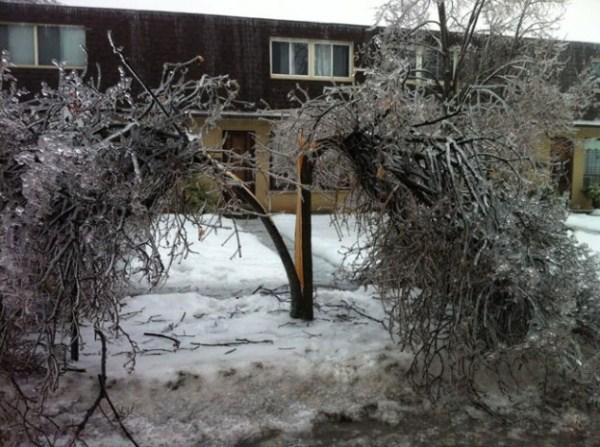 ice-storm (22)