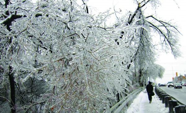 ice-storm (25)