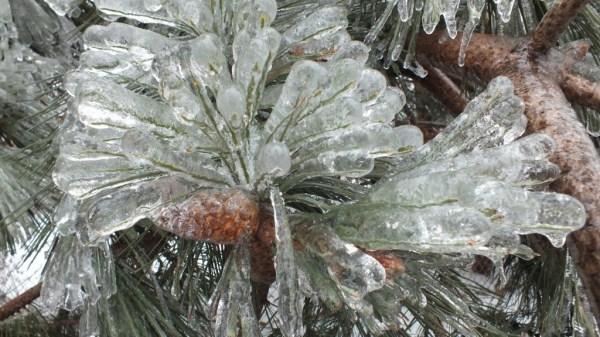 ice-storm (26)