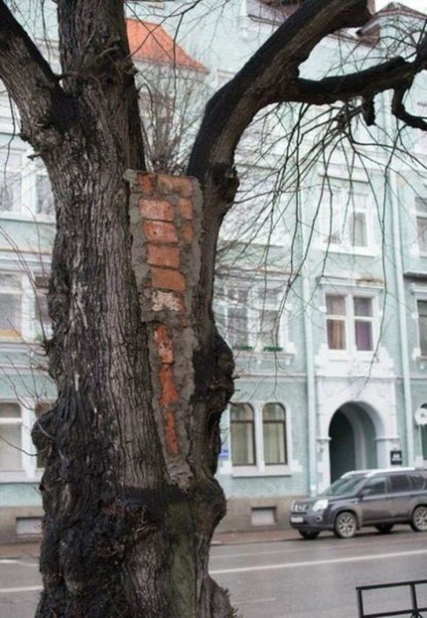 only in russia 11 40 This is Why We Love Russia (43 photos)