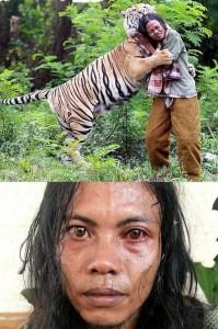 Meet Abdullah Sholeh And His Tiger Mulan (19 photos) 19
