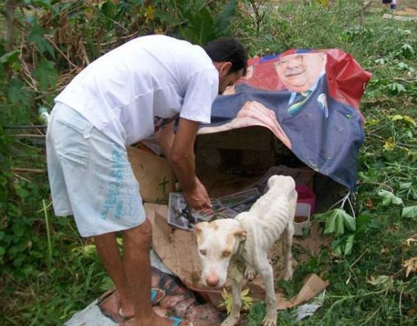 dog-rescue (2)