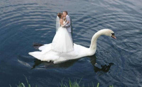 funny-wedding-photos-from-eastern-europe-4