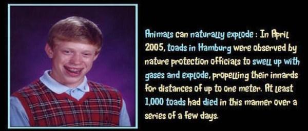 unbelievable but true facts 08 1 45 Unbelievable but True Facts (45 photos)