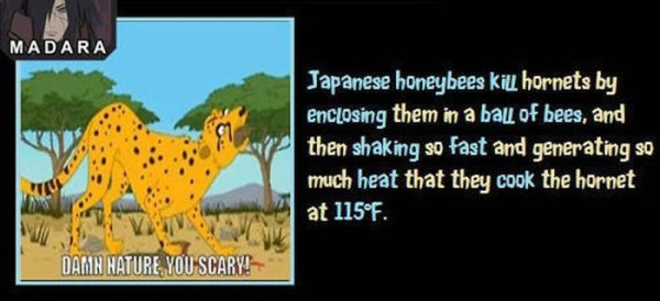 unbelievable but true facts 11 1 45 Unbelievable but True Facts (45 photos)