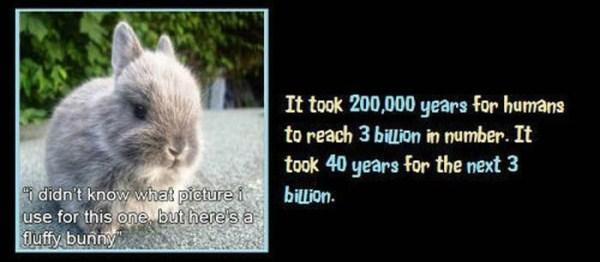 unbelievable but true facts 29 1 45 Unbelievable but True Facts (45 photos)