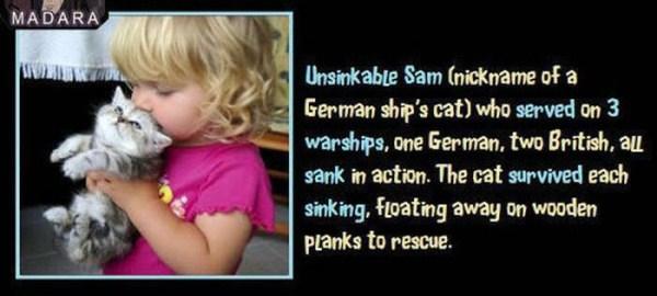 unbelievable but true facts 31 1 45 Unbelievable but True Facts (45 photos)