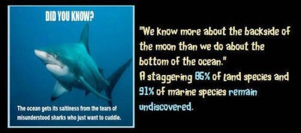 unbelievable but true facts 34 1 45 Unbelievable but True Facts (45 photos)