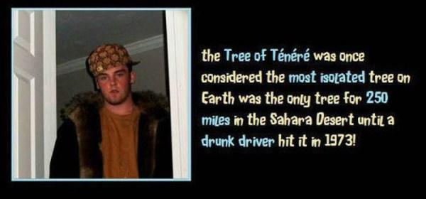 unbelievable but true facts 35 1 45 Unbelievable but True Facts (45 photos)