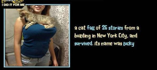 unbelievable but true facts 36 1 45 Unbelievable but True Facts (45 photos)