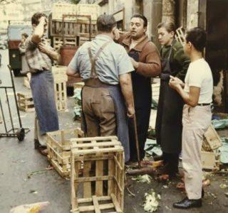Life In Paris In The 1950's (26 photos)
