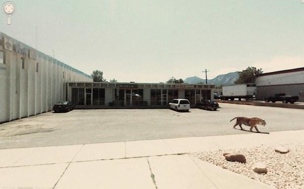wtf-Google-Street-View (24)