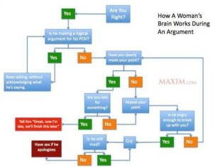 Don't Bother Trying to Understand Female Logic (39 photos) 15