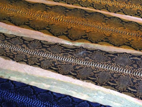 Snakeskin-industry-in-Indonesia (8)